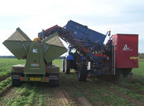 Larrington Wing Lift Carrot Box Loader